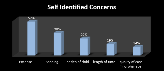 Self Identified Concerns - Adoption Research