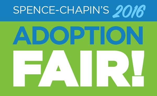 Adoption fair '16